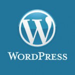 WordPress Twenty Fourteen 設定中1